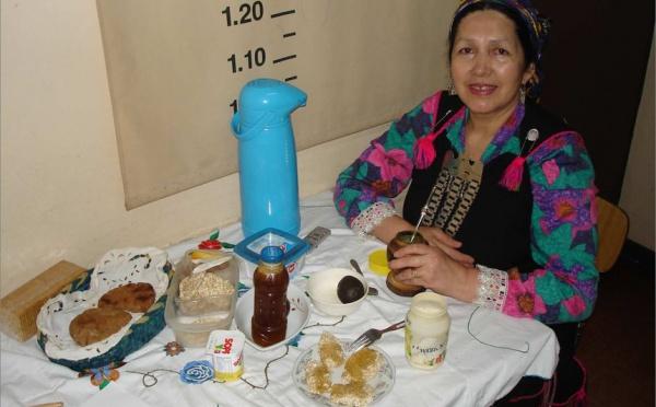 « Le peuple mapuche du Chili : culture de la résistance ou résistance à la culture ? »