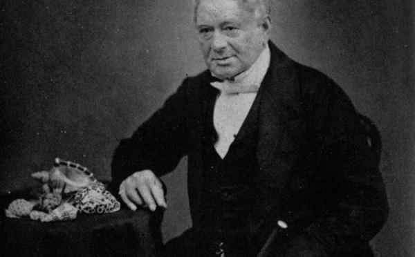 Carnet de voyage - 1827 : Hugh Cuming, prince des coquillages