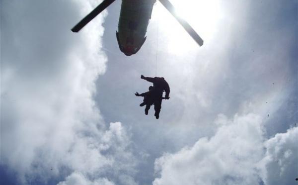 1500 pieds de paka découverts à Raiatea