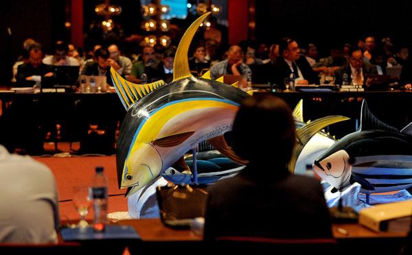 Pêche au thon: les nations du Pacifique contre les velléités américaines de relever les quotas