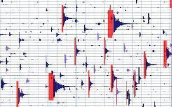 Séisme de magnitude 6,6 au large des côtes néo-zélandaises (USGS)