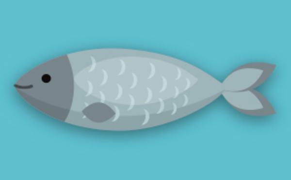 Météo du prix du poisson / Juillet 2019