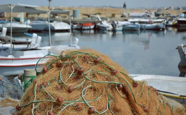 Pêche illégale en Guyane: plus de deux tonnes de poissons saisies