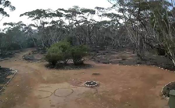 """Une Australienne perdue dans le bush sauvée par un """"SOS"""" écrit dans la terre"""