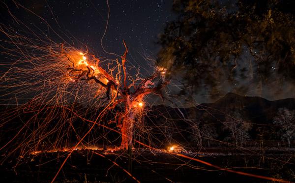 Californie: les incendies attisés par des vents violents