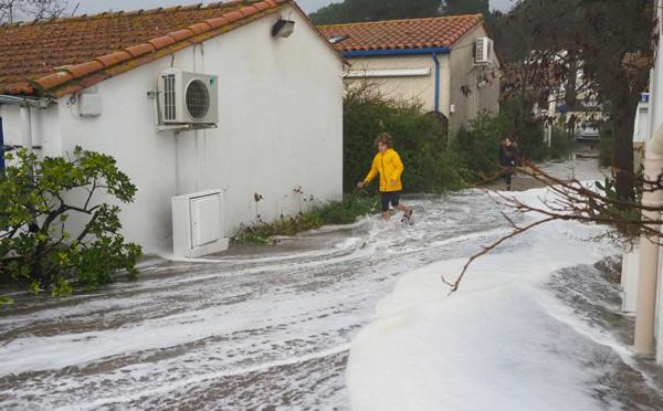 """La tempête """"Gloria"""" touche les Pyrénées-Orientales, 1.000 foyers sans électricité"""