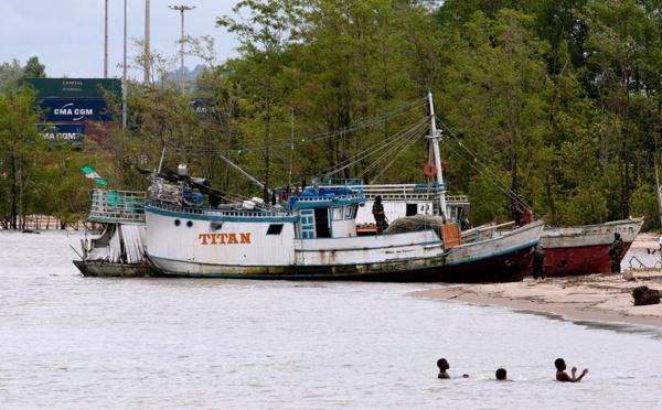 Brésil: des poissons contaminés au mercure près de la Guyane
