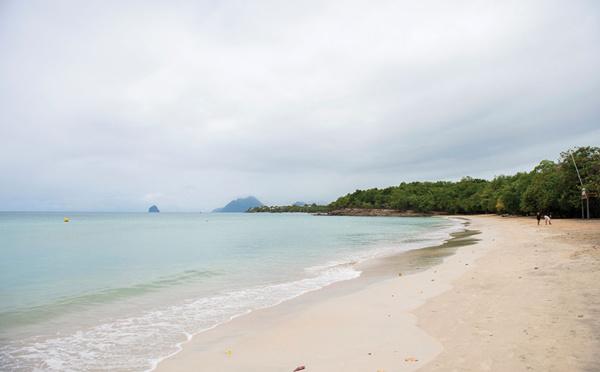 Covid: les touristes profitent de la réouverture des plages en Martinique