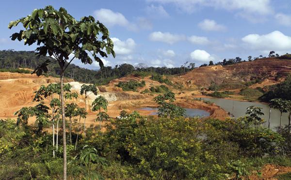 Guyane: l'avenir incertain de l'usine aurifère d'Auplata inquiète fournisseurs et élus