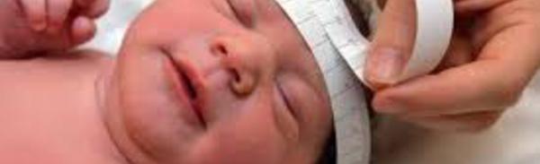 """Zika: des """"dizaines de milliers"""" de bébés pourraient naître avec des malformations ou d'autres affections"""