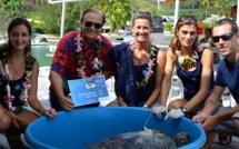 La tortue verte Apetahi retrouve la mer