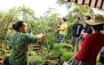 Les éco-sentinelles en formation à la permaculture avec Jonathan Cunéo. (crédit: FAPE)