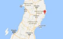 Un séisme d'une magnitude de 6,1 frappe la côte est du Japon