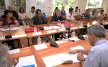 Restructuration des forces armées : réunion du Comité de site