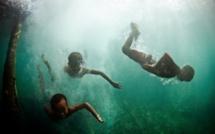 Première preuve d'une adaptation génétique à la plongée (étude)