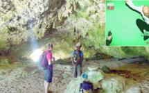 Benjamin, guide de randonnée, en 2015, dans la grotte Malou, à Tiga. « C'est un endroit que les vieux ont fréquenté pour trouver des chants et des danses. Les créations sont ensuite perpétuées auprès des jeunes. » C'est un chant ainsi ramené qu'a utilisé Moby dans l'album Play. Photo Fabien Dubedout (photo NC)