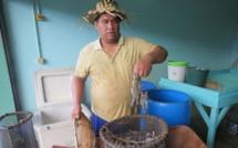 La société d'aquaculture d'Opunohu est en activité depuis 1992.