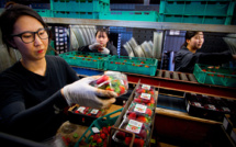 Psychose des fraises piégées en Australie: la suspecte en détention