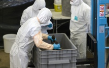 En Grèce, 17 morts de la grippe A en une semaine