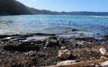 Iles Salomon: un cyclone emporte 28 passagers d'un ferry affrété pour lutter contre le coronavirus