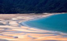 Quand le ministre néo-zélandais de la Santé sort de confinement pour aller à la plage
