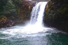 Tongariro 5 Wairere stream