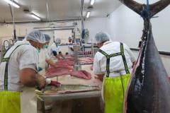 2015-01-06- visite Fisher TNOF (3)
