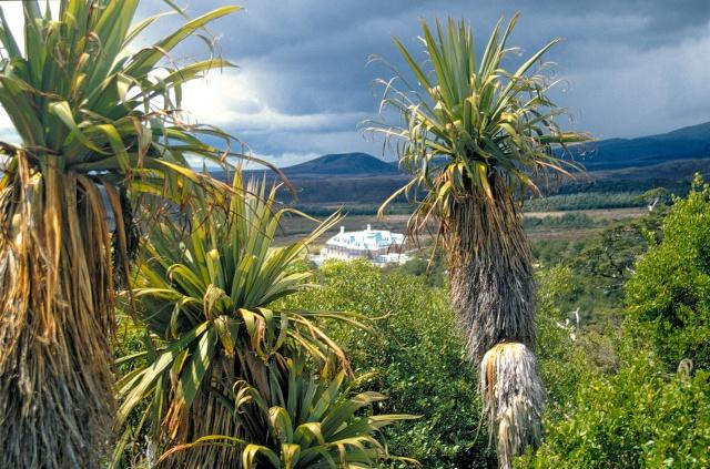 Tongariro 4