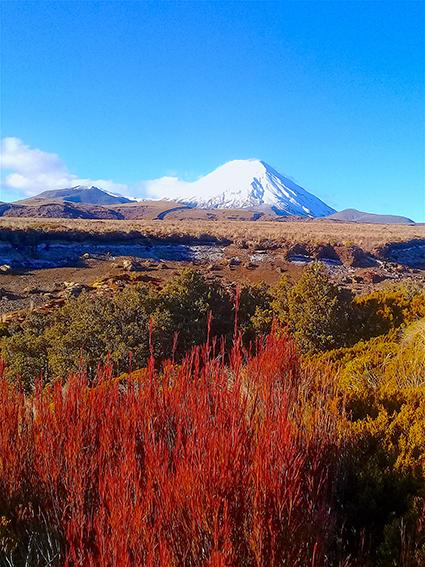 Tongariro 12