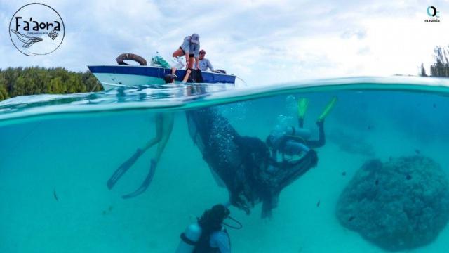 Fa'aora, évaluer pour solutionner la problématique des déchets en mer.