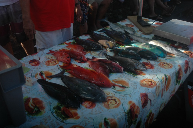 de belles pêches ont été présentées lors de ces 2 journées