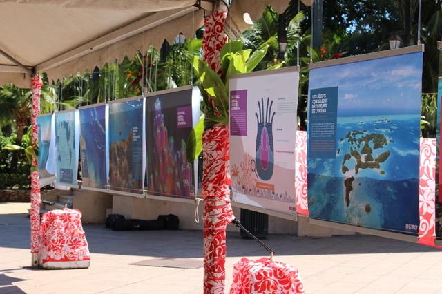 Du 2 au 9 octobre, l'équipage vous donne rendez-vous à l'Espace Tara, où se tient l'exposition Tara Pacific, la biodiversité des récifs coralliens face au changement climatique